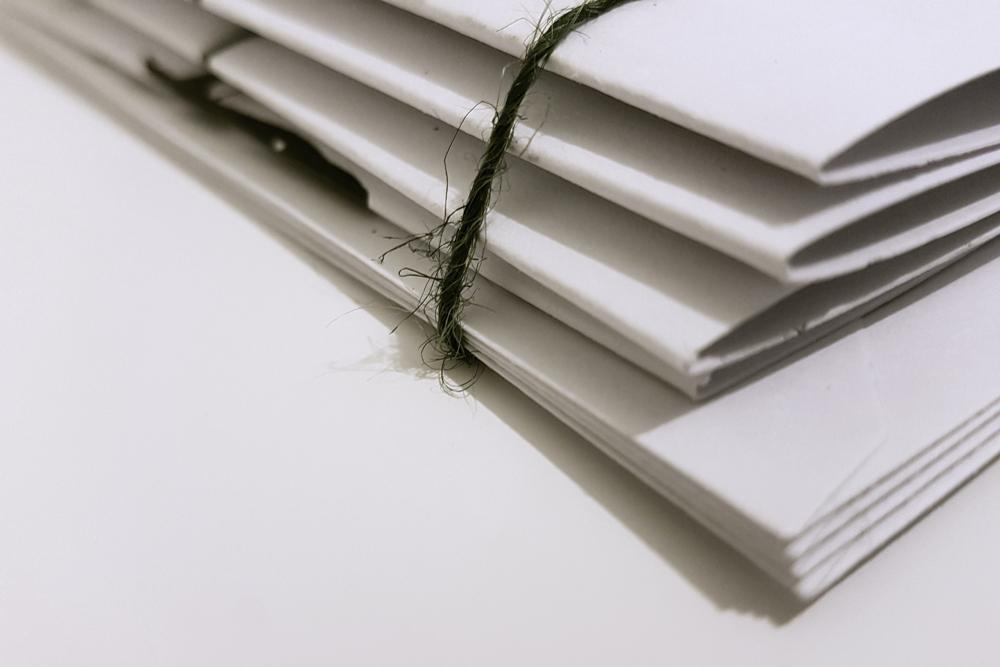 Understanding the sharp primary level enrolment increases beginning in 2011
